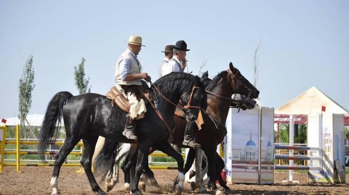 I Cavalieri di Maremma e i cavalli Kazaki
