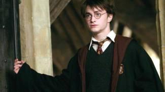 Il maghetto Harry Potter