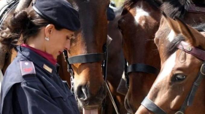 Una agente di Polizia e alcuni cavalli