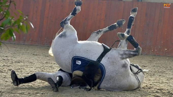 incontri equestri Australia siti di incontri gratuiti a Detroit