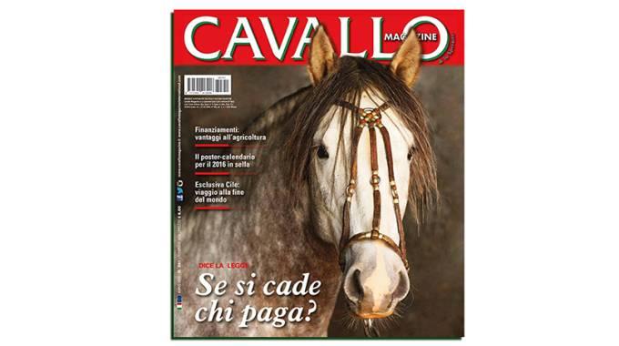 Cavallo Magazine 351 di febbraio 2016 è in edicola -