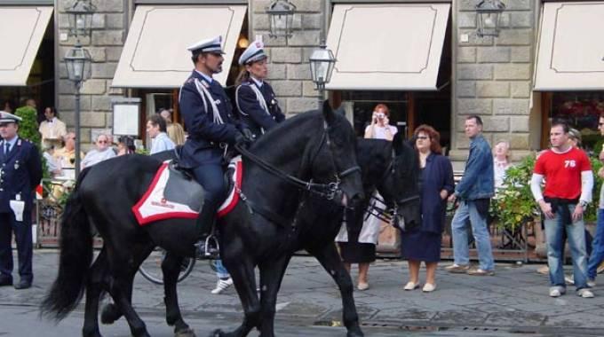 Arezzo all 39 asta marcolino e pantaleo i due cavalli della for Magri arreda pescara