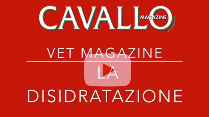 Cavallo Magazine - Video Tutorial Veterinaria - La disidratazione del cavallo