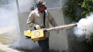 West Nile Virus, le zanzare allungano la stagione: 149 i cavalli colpiti in Italia