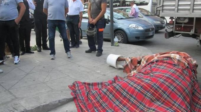 Il cavallo morto a Palermo ieri mattina