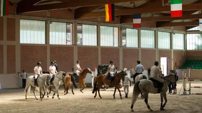 Il Galateo dell'equitazione in maneggio © Marta Fusetti