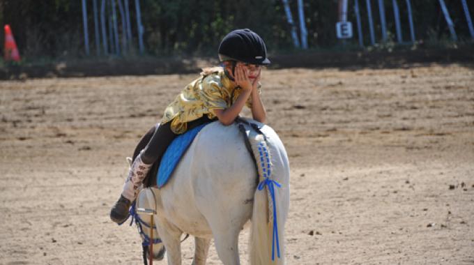 Cavalli A Roma Ci Saranno Anche Pony Horsemanship E Attacchi