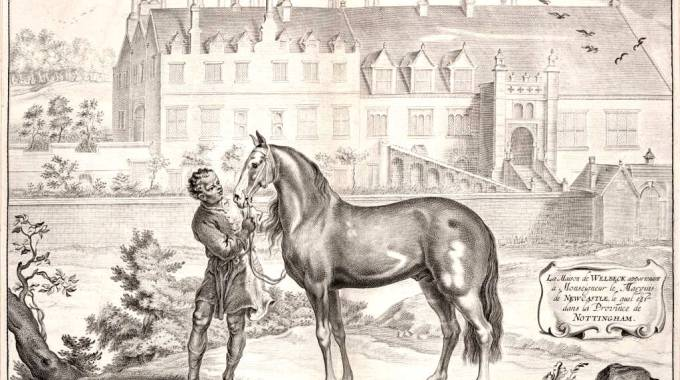 Paragon, berbero del Duca di Newcastle a Welbeck