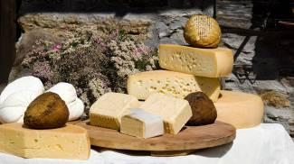 Un alimento antico, il formaggio