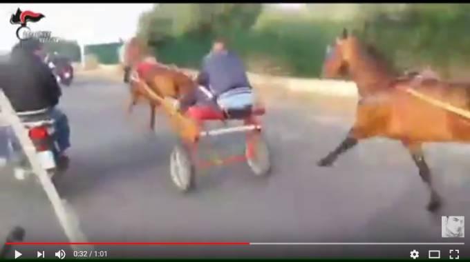 Un frame del video sull'operazione Zikka