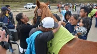 Colombia: incentivi per i trasportatori che dismettono i cavalli