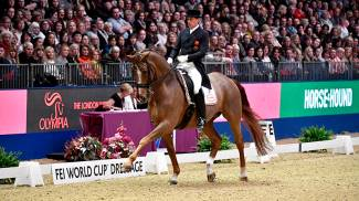 The best dressage and driving riders are competing in London