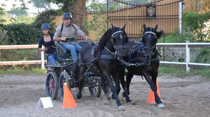 Sport Equestri: nel 2018 circuito di attacchi Fitetrec Ante- Gia © Fitetrec Ante