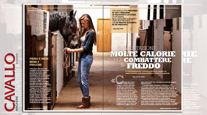 Benessere cavalli: molte calorie per combattere il freddo, il servizio su Cavallo Magazine