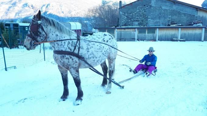Elli, pronta per la neve