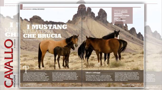I Mustang, dal nr.374 di Cavallo Magazine