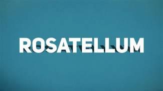 Rosatellum: ciò che devi sapere prima di votare