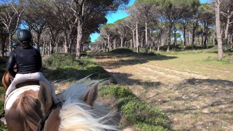 Horse Country Resort in Sardegna, trek in pineta in compagnia di guide esperte  ©HCR