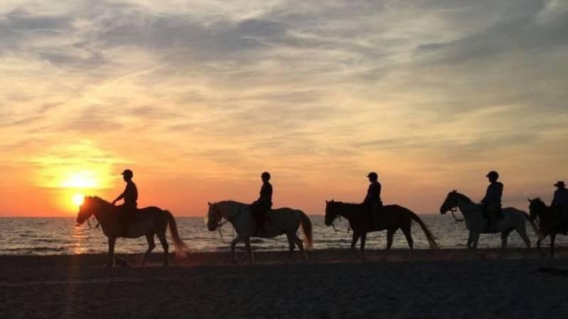 Horse Country Resort in Sardegna, trek in spiaggia in compagnia di guide esperte ©HCR