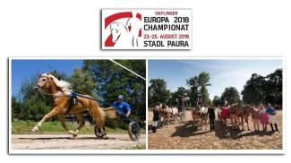 Campionato Sportivo Europeo Haflinger 2018