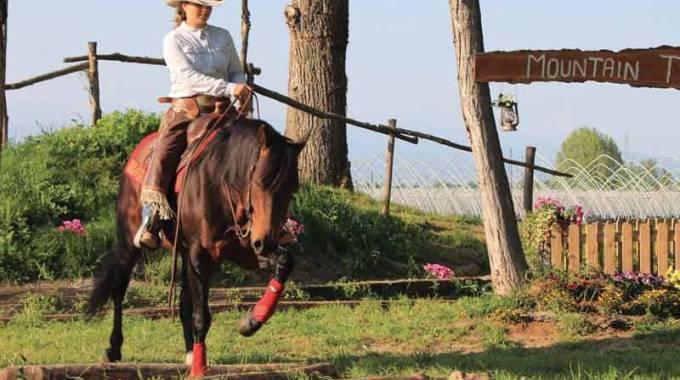 Conto alla rovescia per la 31esima edizione del Salone del Cavallo Americano, 25-27 maggio
