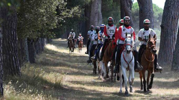 Toscana Endurance Lifestyle 2018: ecologia e benessere animale ©TEL