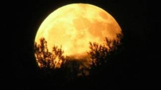 """Parco San Bartolo (Pesaro): """"Eclissi di Luna & trekking con l'astronoma"""""""