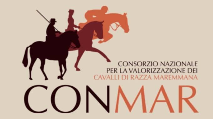 Pescia Romana il 5 Agosto 2018 palcoscenico la finale di Monta Maremmana e Campionato