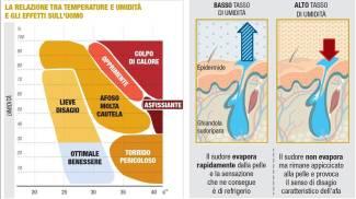 Afa, temperatura e umidità: il grafico