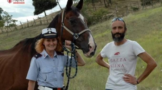 In pensione Albert, il decano dei cavalli della Polizia Municipale di Firenze