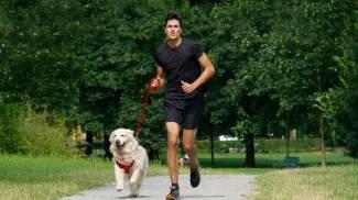 Bob Martin Dog Run