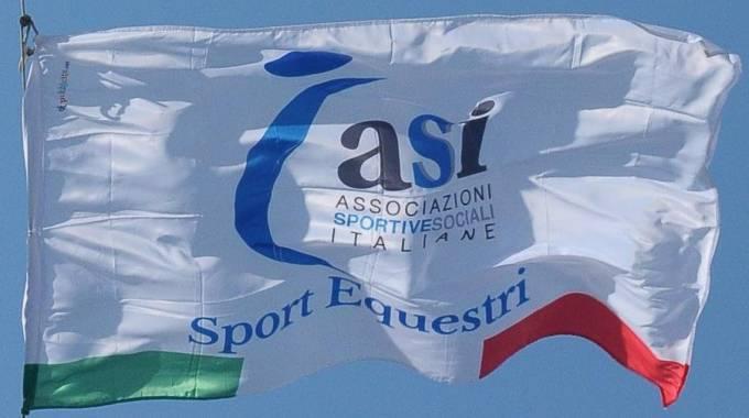 Asi - Sport Equestri © Asi
