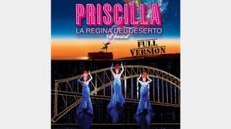 PRISCILLA il musical 18 19 e 20 gennaio al TEATRO VERDI