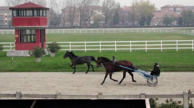 Ferrara: finalmente assegnata la gestione dell'Ippodromo