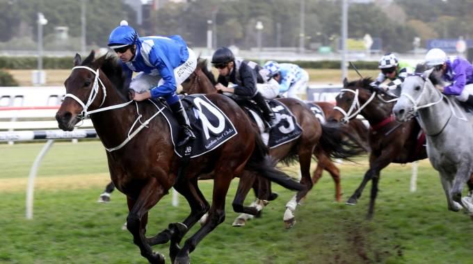 Winx, Australiano dell'Anno, in corsa - Photo by Bob Barker / AFP