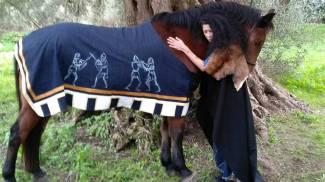 Horse Painting in Sardegna: un Medioevo fiabesco a sostegno dell'infanzia