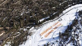 Attivisti di Greenpeace in Val Visdende (Ansa)