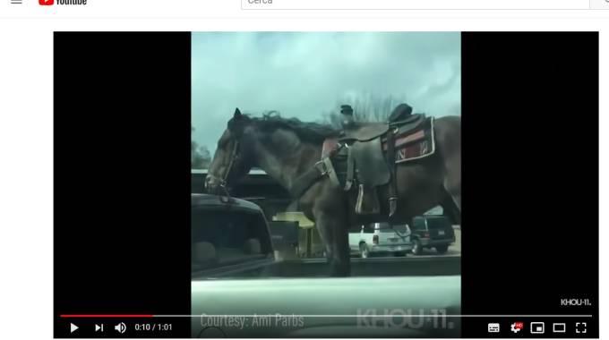 Santo subito: il cavallo di Corrigan, foto frame da YouTube