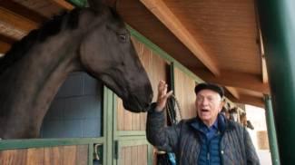 Siena: conclusa la prima esperienza di alternanza scuola/lavoro sui cavalli da Palio