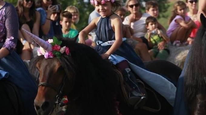 Il Bardigiano: un cavallo magico! foto di Niccolò Crippa