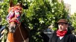 Cavalli protagonisti per il Festino di San Silvestro