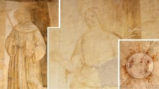 Affreschi a Urbino, attribuiti a Raffaello da Alessandro Parronchi nel 1969