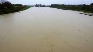 Il Reno oggi a Ponte Bastia, al confine tra le province di Ravenna e Ferrara (Scardovi)