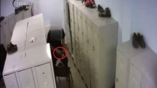 Furto di anabolizzanti (Frame video carabinieri)