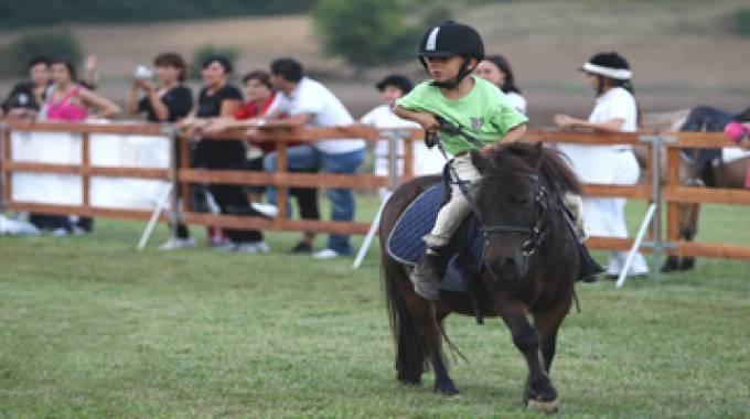 bambini e pony in azione