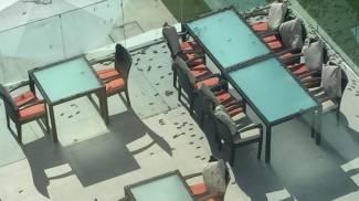 Locuste in Oman (foto gentilmente inviata da Gabriella Daniele)