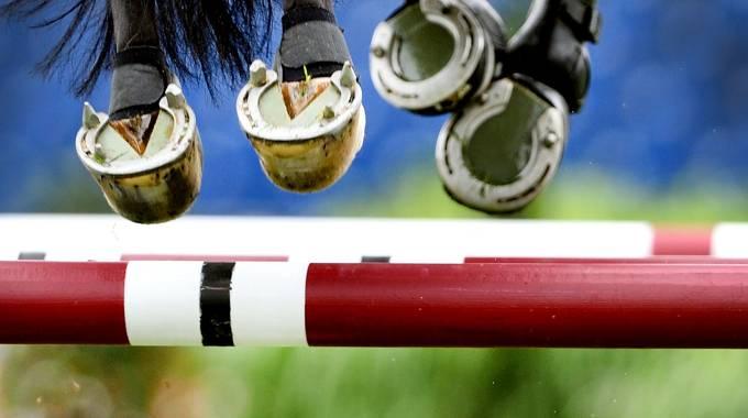 La guida degli sport equestri del fine settimana 6-9 dicembre 2018 (ph. AFP)