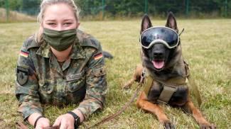 Germania, cani addestrati per fiutare il Covid-19 (Ansa)