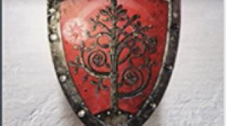 Il cavaliere dei Sette Regni su amazon.it