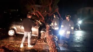 Un'auto travolta da un albero durante la tromba d'aria di Rosignano